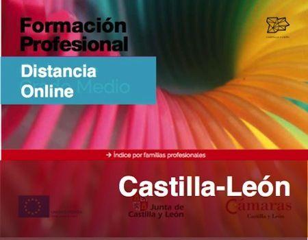 Oferta De Formación Profesional A Distancia En Castilla Y León