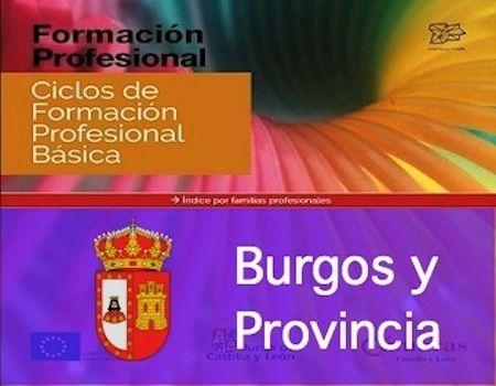 Oferta De Estudios De Formación Profesional
